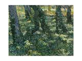 Undergrowth, 1889 Giclée par Vincent Van Gogh