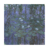 Blue Water Lilies  1916-1919