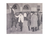 Horse Dealers at the Barbican  London  C1918