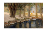 Garden of Gethsemane  1880S