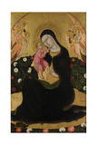 The Virgin and Child with Angels (Madonna of Humilit)  Mid of the 15th C