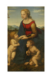 Madonna and Child with Saint John the Baptist (La Belle Jardinièr)