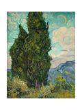 Cypresses Giclée par Vincent Van Gogh