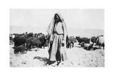 Arab Shepherd  Kazimain Area  Iraq  1917-1919