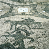 Chariotieer  Mosaic  Cisarii  Ostia  Italy  C1st Century