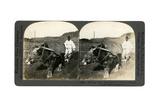 Farming Near Seoul  South Korea  1900s