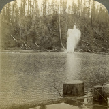 Log Flume  Oregon  Usa