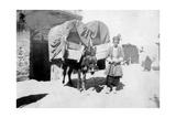 Persian Donkey Transport  Baghdad  Iraq  1917-1919