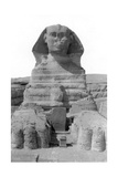 The Great Sphinx of Giza  Egypt  May 1949