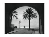 Quai Des États-Unis  Nice  France  1937