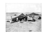 Caravan Camp  Sahara Desert  Late 19th Century