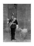 The Drum Major and Goat of the 1st Battalion the Welch Regiment  1896