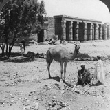 Looking North to the Temple of Sethos I  Thebes  Egypt  1905