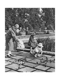 Children Feeding the Sparrows in Hyde Park  London  1926-1927