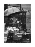 Flower Seller  Piccadilly Circus  London  1926-1927