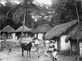 Family Outside their Home  Coolie Street  Kingston  Jamaica  1931