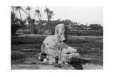 Alabaster Sphinx at Memphis  Egypt  C1920s-30s