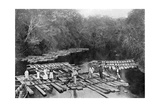 Rafts on the Tebicuary-Mi River  Paraguay  1911