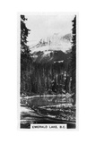 Emerald Lake Near Field  British Columbia  Canada  C1920S
