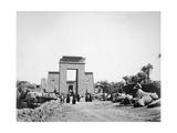 Avenue of Sphinxes  Karnak  Egypt  1878