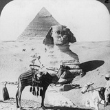 The Great Sphinx of Giza  Egypt  1905