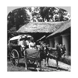 Leaving the Dak Bungalow for a 'Bile-Gharry  Belgaum District  Southern India  1900s