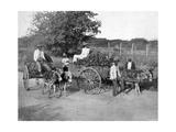 Wood Carts  Jamaica  C1905