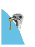 Ostrich Portrait With Key
