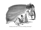 """Actually  what I had in mind was something a little larger"" - New Yorker Cartoon"