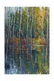 Pine Reflection II