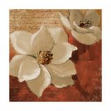 Midday Magnolias I