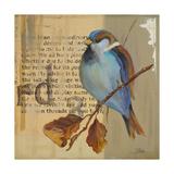 Blue Love Birds I