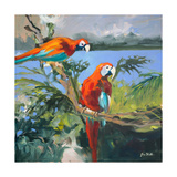 Parrots at Bay II