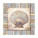 Beach Shell I