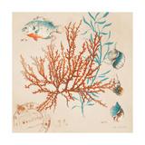 Coral Medley I Giclée premium par Lanie Loreth