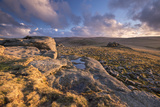 Rich Evening Sunlight Bathes the Moorland at Higher Tor in Dartmoor National Park  Devon  England
