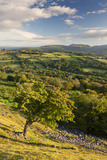 Rolling Countryside Surrounding the Usk Valley  Brecon Beacons National Park  Powys  Wales Summer