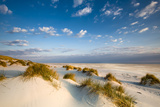 Dunes  Amrum Island  Northern Frisia  Schleswig-Holstein  Germany
