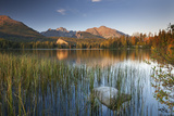 Strbske Pleso Lake in the Tatra Mountains  Slovakia  Europe Autumn