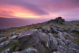 Spectacular Pink Sunrise Above Belstone Tor  Dartmoor  Devon  England Winter