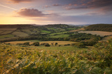 Rolling Dorset Countryside Viewed from Golden Cap  Dorset  England Summer