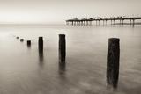 Teignmouth Pier and Coastal Defences at Teignmouth  South Devon  England Summer