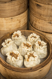 Steamed Dumplings (Steamed Bun or Xiaolongbao)  Qibao  Shanghai  China