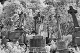 Infrared Image of the Graves in Highgate Cemetery, London, England, UK Papier Photo par Nadia Isakova