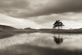 Kelly Hall Tarn at Twilight  Lake District  Cumbria  England Autumn (November)