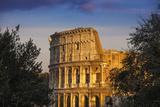 Italy  Lazio  Rome  the Colosseum