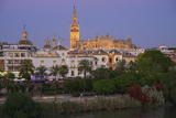Cathedral  Seville  Andalusia  Spain