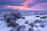Beautiful Sunrise over a Frozen and Snow Covered Belstone Tor  Dartmoor National Park  Devon