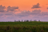 Sunset Sky and Hana Landscape  Maui Hawaii
