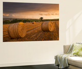 Hay Bales in a Ploughed Field at Sunset  Eastington  Devon  England Summer (August)